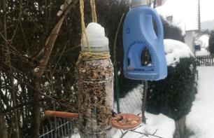 Vogelfutterspender aus PET-Flaschen (zwei Varianten)