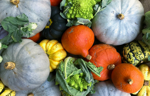 Kürbissorten – Diese Arten eignen sich als Kürbisdeko